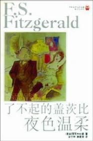 了不起的盖茨比 夜色温柔:译林世界文学名著 现当代系列
