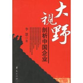 大视野:剖析中国企业
