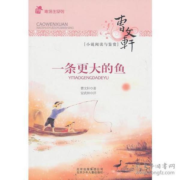 9787530126431曹文轩小说阅读与鉴赏--一条更大的鱼