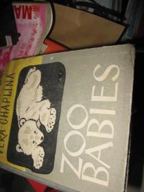 ZOO BABIES 动物园的小动物 英文