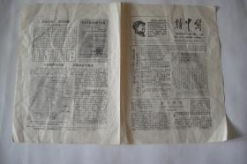 文革小报、画刊(199)