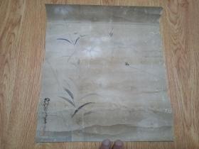 清晚期日本狩野派画家【狩野良信】绘《蜻蜓花草图》