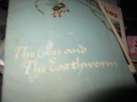 蚯蚓和蜜蜂的故事 英文版 类似连环画 严文井著 黄永玉插画 1958年一版一印