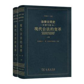 法律文明史(第十三卷)(全两卷):现代公法的变革