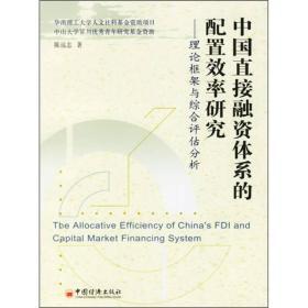 中国直接融资体系的配置效率研究:理论框架与综合评估分析