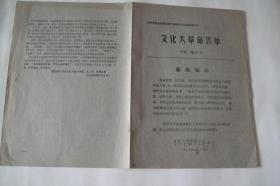 文革小报、画刊(206)