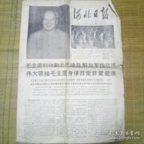 河北日报(对开)