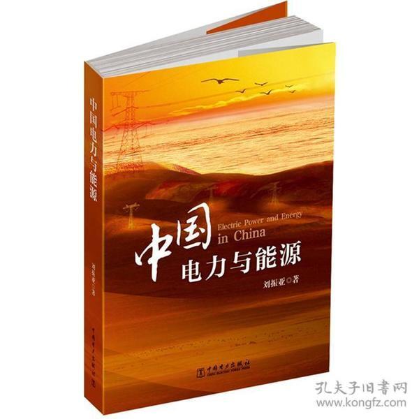 9787512326675中国电力与能源:大能源观下,对电力与能源战略的思考