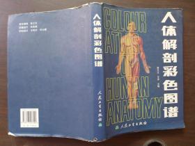人体解剖彩色图谱.