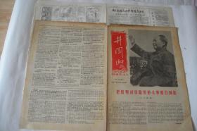 文革小报、画刊(214)