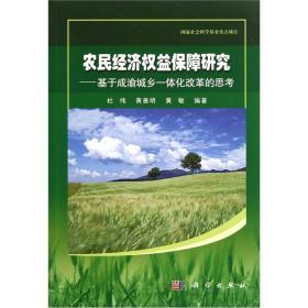 农民经济权益保障研究