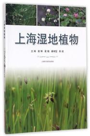 9787547835623 上海湿地植物 袁琳