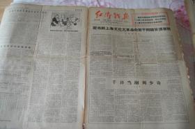 文革小报、画刊(222)