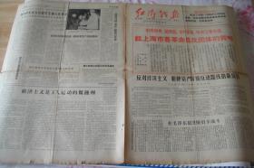 文革小报、画刊(223)