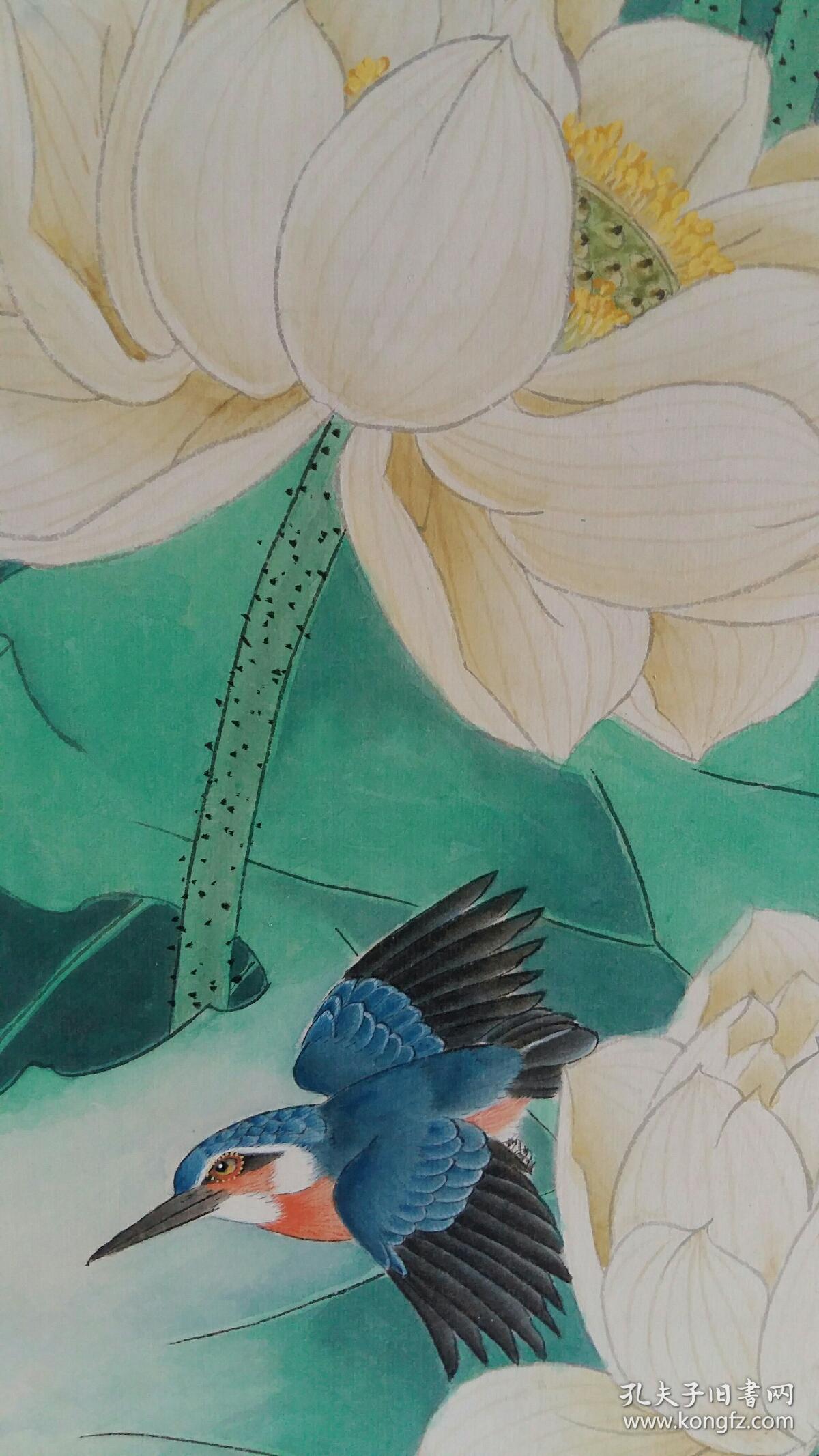 安徽著名老画家……三平尺……工笔花鸟图片