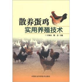 散养蛋鸡实用养殖技术