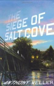 The Siege Of Salt Cove