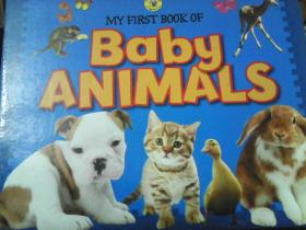 My first book of baby animals 英文原版[Board book]