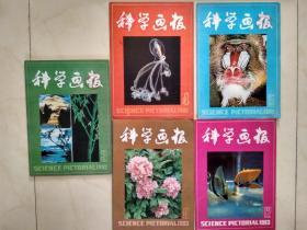 科学画报1983/3,4,5,8,12(共五本)