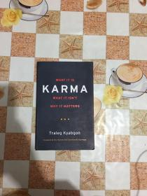 Karma: What It Is What It Isn't Why It Matters