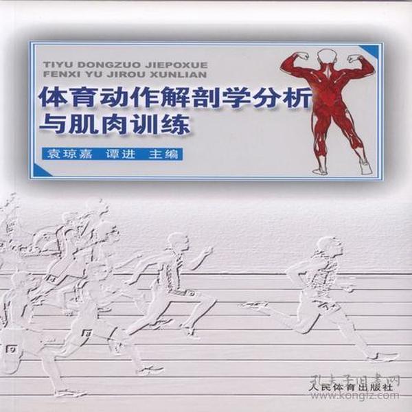 体育运作解剖学分析与肌肉训练