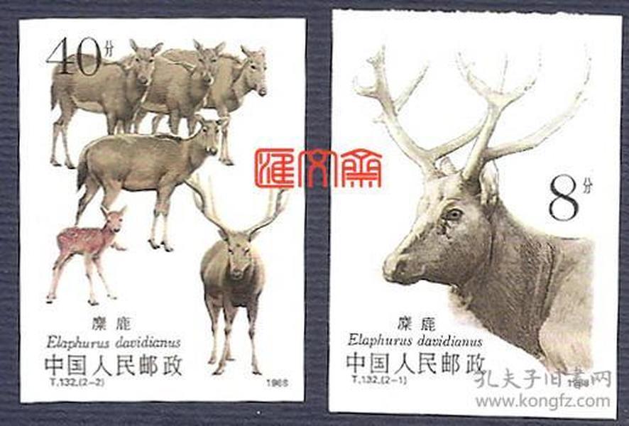 T133麋鹿 无齿票,麋鹿、麋鹿群,许彦博大师设计,保真原胶全新邮票一套