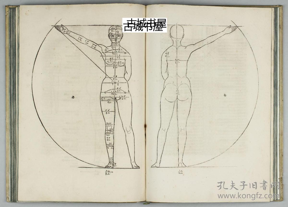 人体艺体性交网_极其珍贵,文物级《丢勒的著作:人体艺术,人体的对称性
