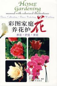 彩图家庭养花护花