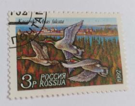 外国邮票(信销票1枚)