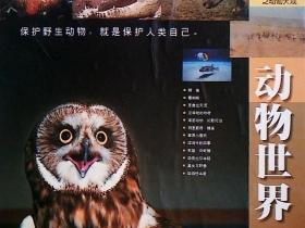 文献光盘  动物世界----今日世界系列之世界大观(6盒12碟)
