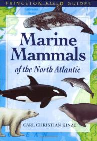 Marine Mammals of the North Atlantic (Princeton Field Guides) 北大西洋的海洋哺乳动物