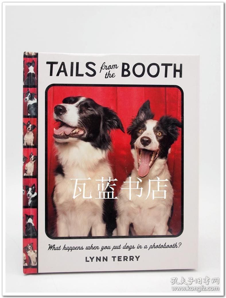 小狗摄影 Tails from the Booth 狗狗拍照