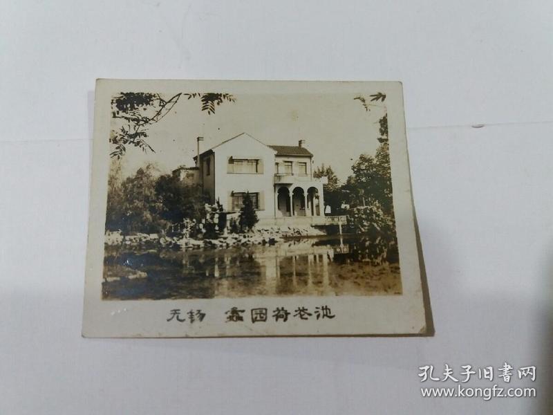 老照片(无锡鑫园荷花池)