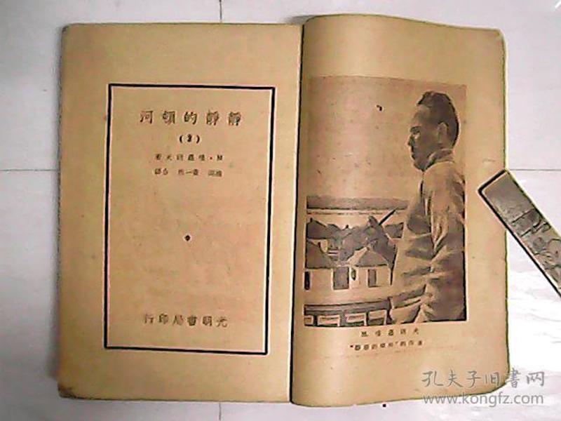 静静的顿河 (2) / 全一册