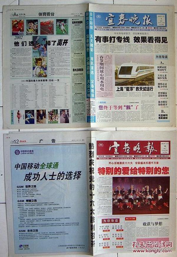 8958宜春晚报20021112 试刊