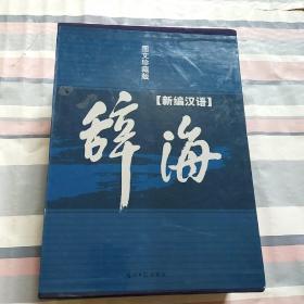 图文珍藏版·新编汉语辞海·上下