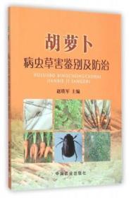 胡萝卜病虫草害鉴别及防治
