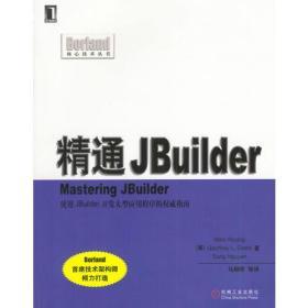 精通JBuilder