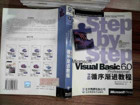 Microsoft Visual Basic 6.0专业版循序渐进教程