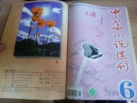 中篇小说选刊(双月刊)   2000年第3.6期(2期) 合订本