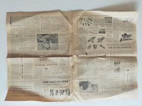 《河北日报》1985.6.16(1–4版)
