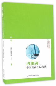 2016年中国短篇小说精选