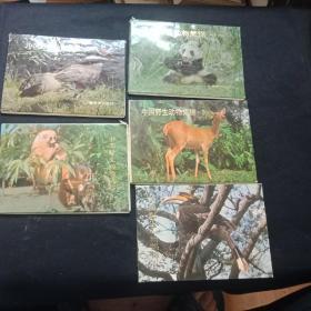 中国野生动物集锦 1-2-3-4-6   缺第五集   每套16张全