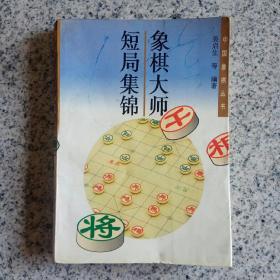 中国象棋丛书: 象棋大师短局集锦
