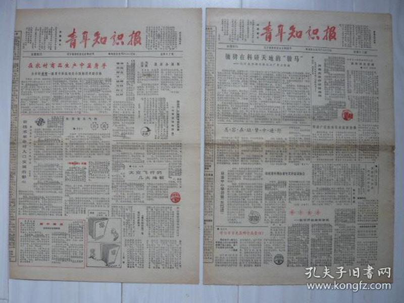 《青年知识报》1987年1月5日、3月20日,共两期,新年寄语。自行车的红色尾灯