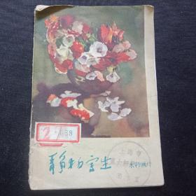 1963年  静物写生 水彩画片  8张全