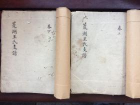 菱湖王氏家谱(清代手抄本 字迹极美)