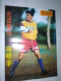 足球明星海报(足球俱乐部1996年)6开双面(比埃尔霍夫) 马明宇