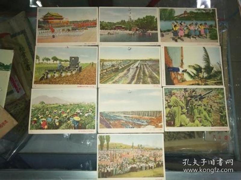 中国人民赴朝慰问团赠 明信片 军邮10张全