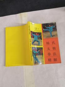 杨式太极拳法精解